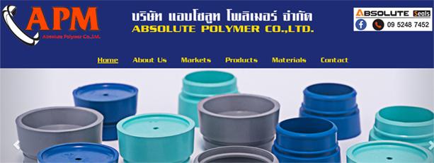 รับทำเว็บไซต์ www.absolutepolymer.co.th